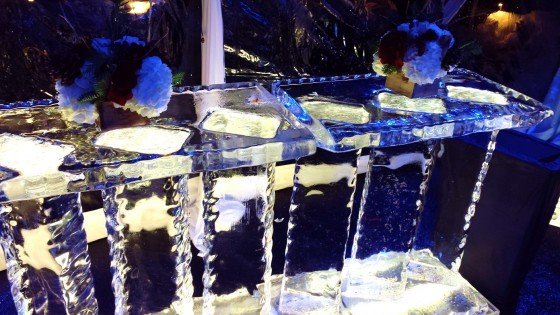 Seth MacFarlane Party, Ice bar