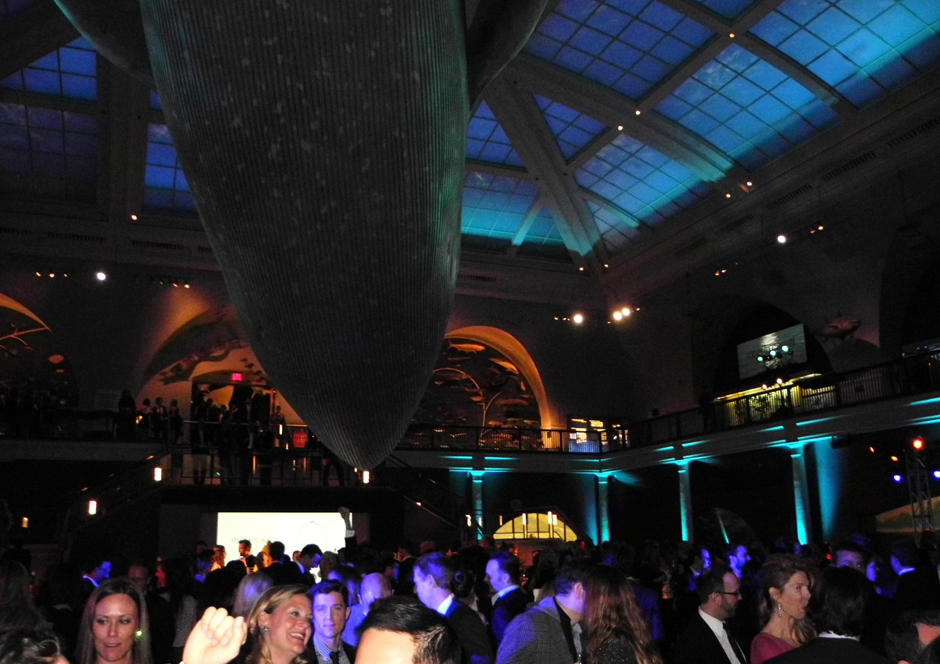 Under the Sea American Museum of Natural History
